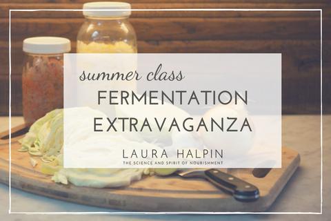 Fermentation Class (1)