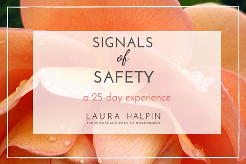 Signals of Safety (1)